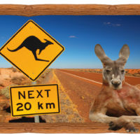 EPN Parc Australien PH 2 18