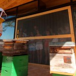 Miellerie clauses narbonne ruche abeilles