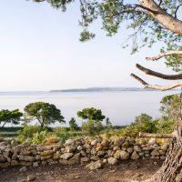 Escapades Narbonne - Parcours nature - Réserve de Sainte Lucie