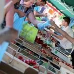 Les marches de narbonne fruits et legumes