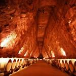 Terra vinea narbonne cave