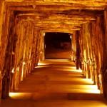 Terra vinea narbonne escalier bois